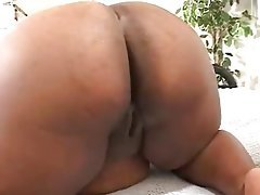 BBW, Big Boobs, Interracial, POV